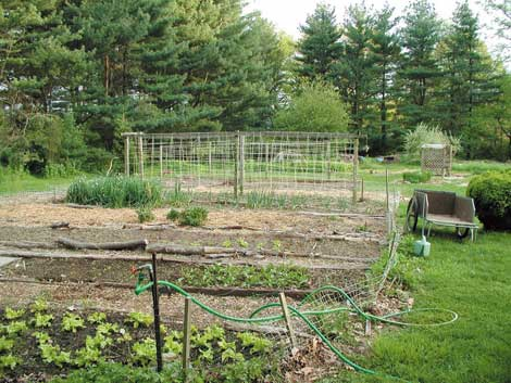 organic_garden30